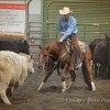 Cascade Cow Cutter Shows